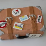 Travel Bag Cake